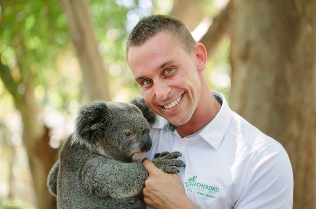 欣赏澳洲知名的动物:毛茸茸的无尾熊,袋鼠,澳洲野犬